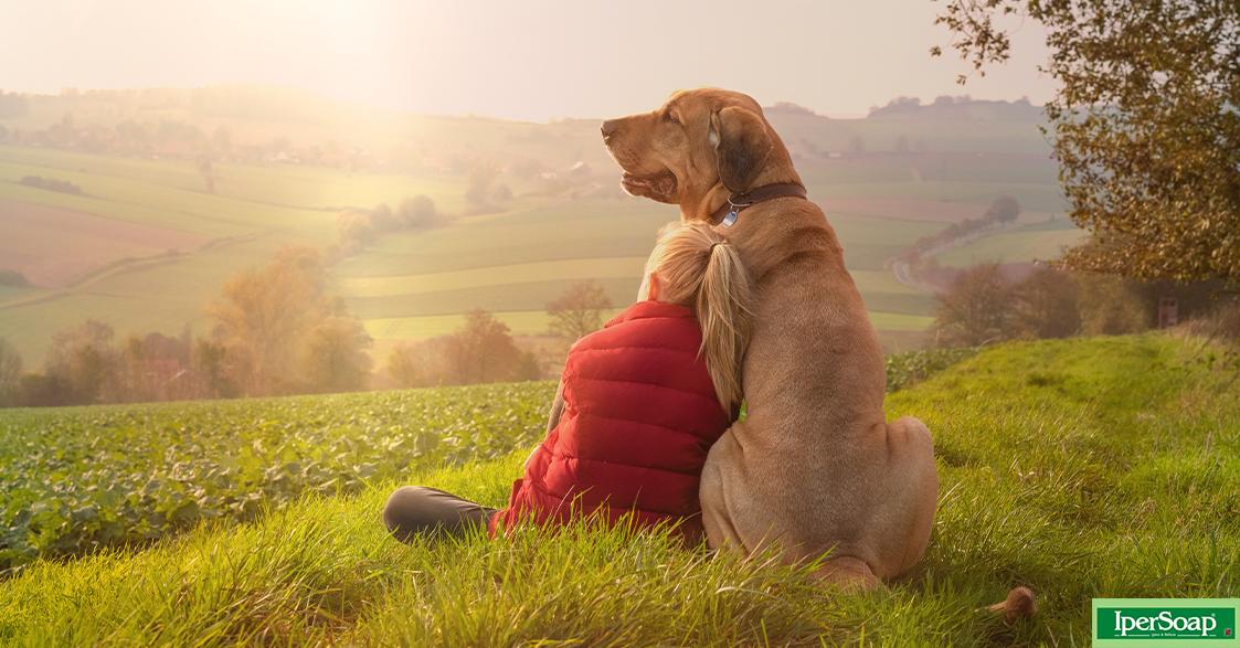 Cosa vuole comunicarci il cane? Alcuni segnali comuni