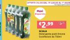 Offerta-Scala